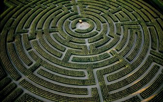 A plant maze pictured from above